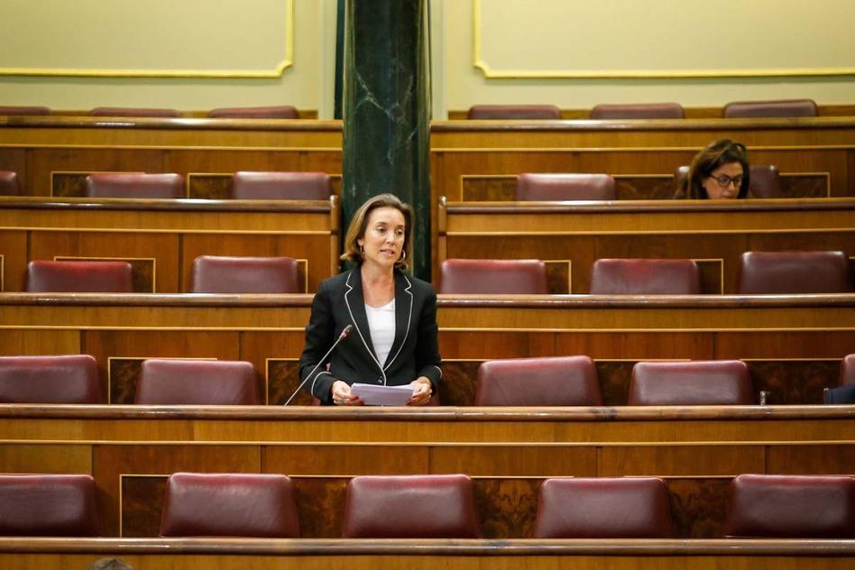 El Congreso declara el deporte como actividad esencial tras el pacto entre PP y Psoe