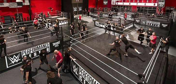 La gestora de espectáculos de lucha libre hundió sus ganancias un 86% hasta el tercer trimestre de 2019, mientras que sus ventas se situaron en 637,6 millones de dólares (573,3 millones de euros).